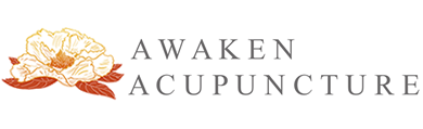 Awaken Acupuncture Ithaca - Dana Carruth
